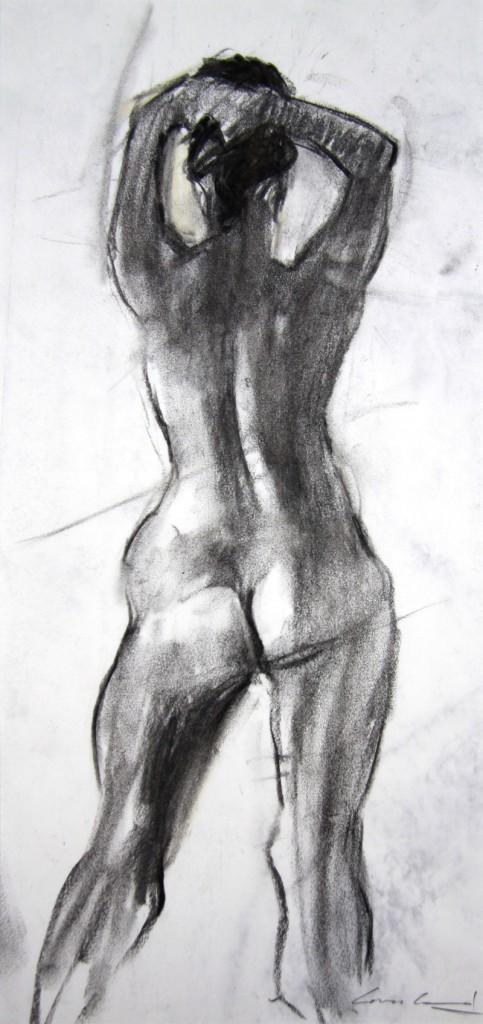 Charcoal sketch of model, done in 20min from life in studio in Hobart, Tasmania.