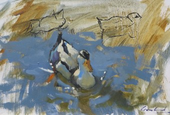 Sketch of duck on river at Richmond in southern Tasmania on summer afternoon.