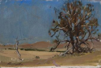 Plein air oil painting of a rural landscape near Ouse in Tasmanian rural landscape, Australia