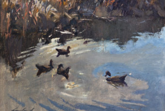 Oil painting of 4 ducks on water. By Tasmanian plein air artist, Rick Crossland.